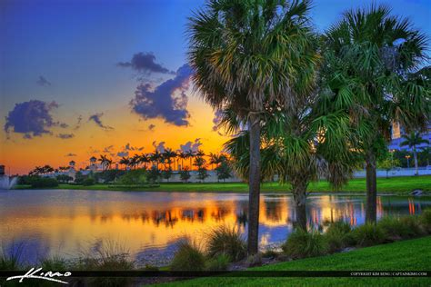 palm gardens sunset at city lake