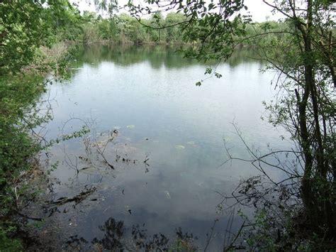 pond background pond background by fuguestock on deviantart