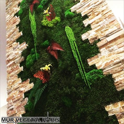 creation mur vegetal interieur creation mur vegetal interieur tableau mur vegetal 3d succulentes et bois flotte faire un mur