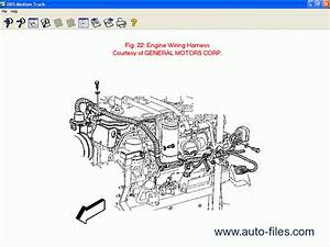 Mitchell Medium Truck 2008  Repair Manuals Download  Wiring Diagram  Electronic Parts Catalog