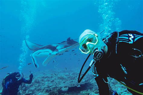 Oceanic Dive Oceanic Diving Center