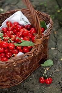 Cherry Fruit Basket