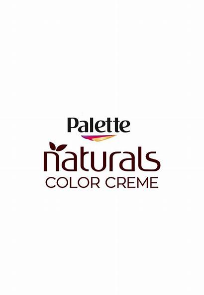 Palette Deluxe Naturals Logos Brands Natural Creme
