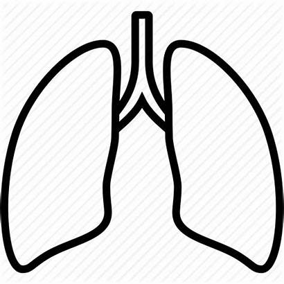 Lungs Lung Outline Clipart Icon Anatomy Organ