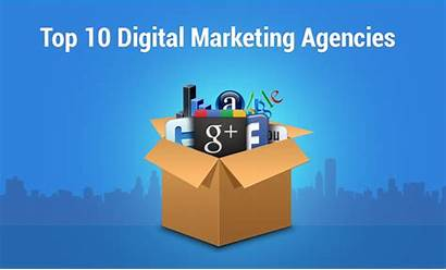 Marketing Services Agencies India Seo Agency Offered