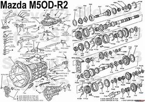 Performance Built M5od R1 M5r1 Transmission Sale The M50d