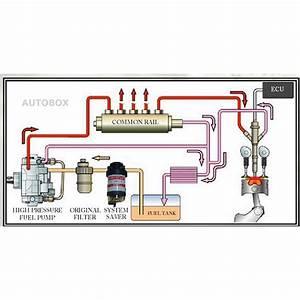 Diesel Fuel Filter Water Separator Universal Pre