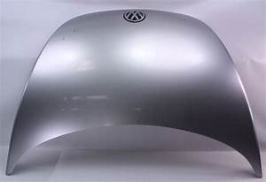 Genuine Vw Hood 98-00 Vw Beetle - Lg9r