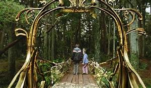 Bridge to Terabithia | Forum Cinemas