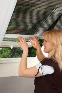 Wespen Unterm Dach Kein Direkter Zugriff Möglich : insektenschutz f r dachfenster tb bauelemente ~ Whattoseeinmadrid.com Haus und Dekorationen