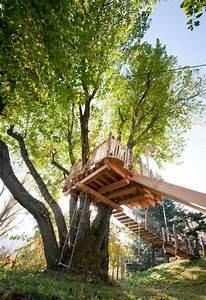 Cabane Dans Les Arbres Construction : la cabane d 39 enfant du saule construction de cabane dans les arbres cabanes pinterest ~ Mglfilm.com Idées de Décoration