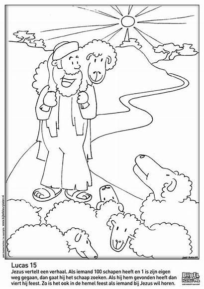 Schaap Verloren Het Kleurplaten Lucas Bijbelknutselwerk Bijbel