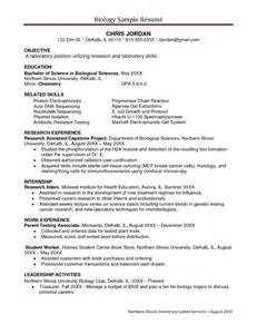 1 Page Resume Template Sle Resume Format Resume Free Template