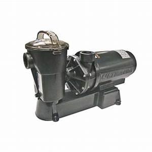 Pompe De Piscine Hayward : pompe de piscine creus e hayward superpump 1 5 hp sp2610x15a ~ Melissatoandfro.com Idées de Décoration