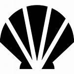 Shell Icons Freepik Designed Icon Vieira Gratis