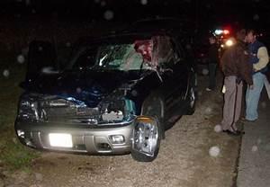 사슴과 SUV의 불운한 로드 킬 사고[Deer & SUV msfortune Road Kill Accident]