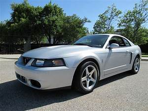 2003 Ford Mustang Cobra for Sale | ClassicCars.com | CC-1093298