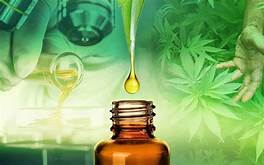 Cannabis Compound Eases Anxiety and Cravings of Heroin Addiction…