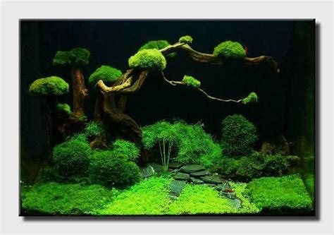 aqua scaping nano fresh pinterest artificial plants