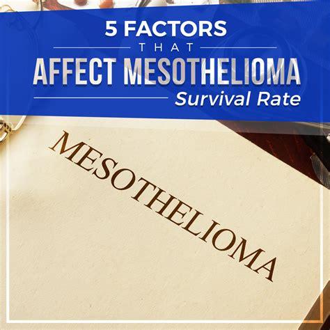 factors  affect mesothelioma survival rate blog