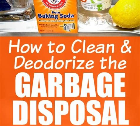 how to clean sink disposal jeni ware author at what 39 s up fagans