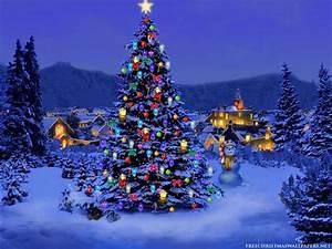 Christmas Tree,Wallpaper - Christmas Wallpaper (8142630