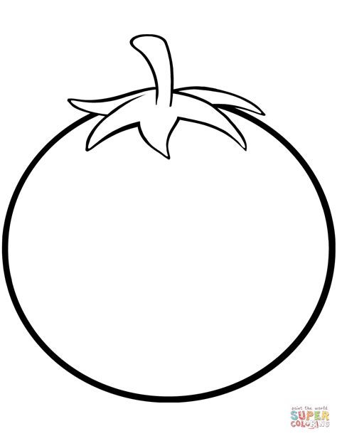 color tomato tomato coloring page free printable coloring pages