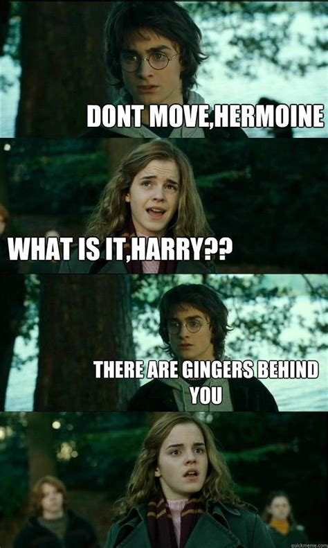 Horny Harry Meme - dont move hermoine what is it harry there are gingers behind you horny harry quickmeme