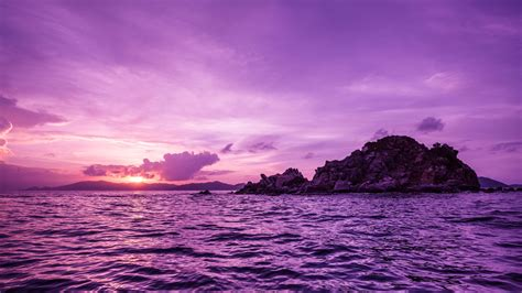 wallpaper pelican island sunset purple travel