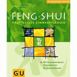 Zimmerpflanzen Feng Shui : feng shui kraftquelle zimmerpflanzen ~ Indierocktalk.com Haus und Dekorationen