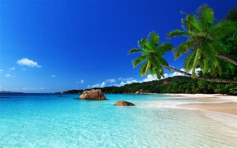 Tropical Backgrounds by Tropical Desktop Backgrounds 54 Pictures