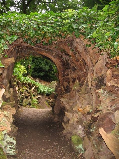 biddulph grange garden  stumpery  johanna