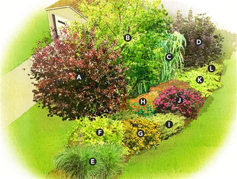 shrub garden design plans quick privacy garden plan