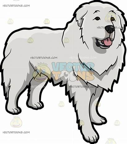 Pyrenees Clipart Drawings 1024px 31kb