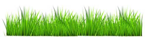grass clip free clipart images wikiclipart