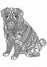 Coloring Animal Mandala Pages Adults Pug sketch template