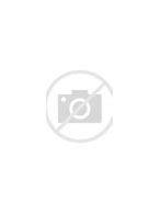 инспектор по исполнению административного законодательства