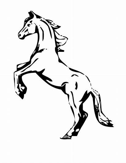 Horse Coloring Pages Rearing