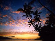 Tropical Sunset Beach Hawaii