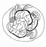 Dinner Meat Coloring Pages sketch template