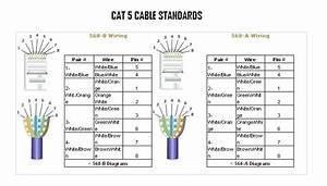 3126 Cat Wiring Diagram  U2013 Eli