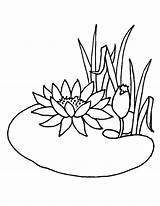 Coloring Pages Pond Lotus Flower Drawing Animals Water Flowers Summer Lily Chinese Colouring Growing Printable Getcolorings Drawings Getdrawings Adults Visit sketch template