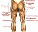 Почему мерзнут ноги и болят суставы