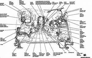 Vacuum Lines On Intake Manifold