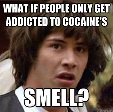 Cocaine Cat Meme - what if people only get addicted to cocaine s smell misc quickmeme