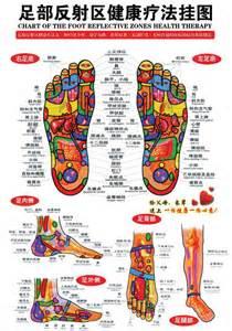 Foot Reflexology Chart Interactive