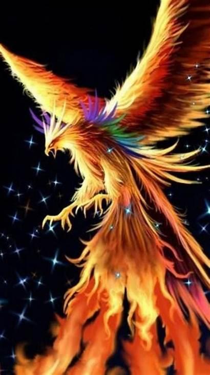 Phoenix Wallpapers Dark Phone Bird Fantasy Mobile