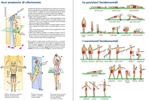 test educazione fisica educazione fisica