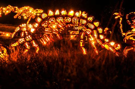 mammoth pumpkin carvings   great jack olantern blaze