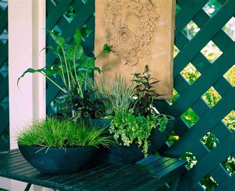 Tropical Tabletop Water Garden